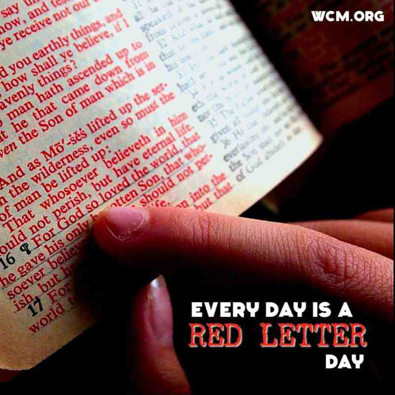 bible every day is red letter day